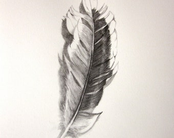 Realistic original pencil drawing ~ Messy feather
