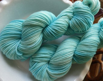 Nipping at Your Nose -- Decadent -- Hand Painted Superwash DK Merino Wool Yarn