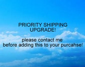 PRIORITY SHIPPING Special Request listing shipping upgrade