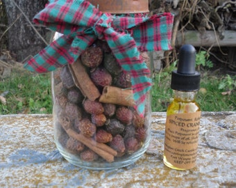 Rustic Mason Jar with Cinnamon Sticks and Rose Hip Seeds.  Your choice of scents in the one ounce fragrance bottle.