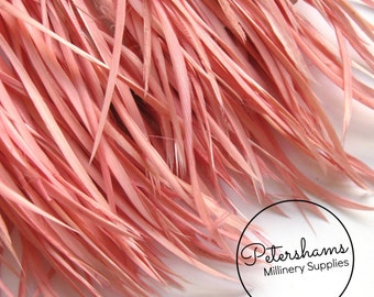 Goose Biot Feather Fringe, 5 Inch Piece (30 or More Feathers) for Millinery and Craft - Dusky Pink