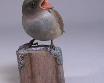 Baby House Sparrow Hand Carved Wooden Bird