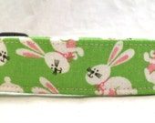 Happy Hopping White Easter Bunnies with Pink Ears on Green Dog Collar