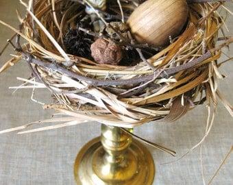 Vintage Birds Nest on Stand, Ceramic Dolls, Brass Candle Holder, Assemblage Art, Frozen Charlotte Doll, Nature Display, Organic