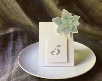 Succulent Table Numbers - Wedding and Events  - Table Number Tent  -Party Decirations - Seating