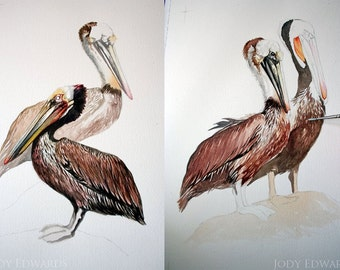 Pelican Pair - Archival Quality print of Pelicans from the original watercolor