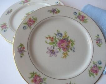 Vintage Royal Jackson Deanna Pink Floral Salad Plates Set of Four