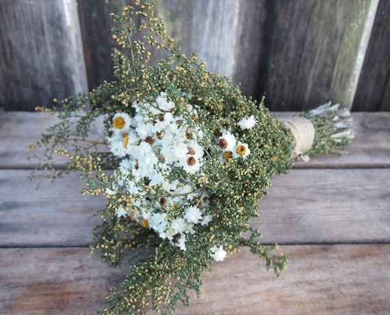 IVORY and GREEN Dried Flower Wedding Bouquet - Preserved Bridal Bouquet - Country Rustic - Simple COUNTRY Bridesmaid Dried Flower Bouquet
