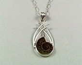 Ammonite Fossil Sterling Silver Pendant - N777