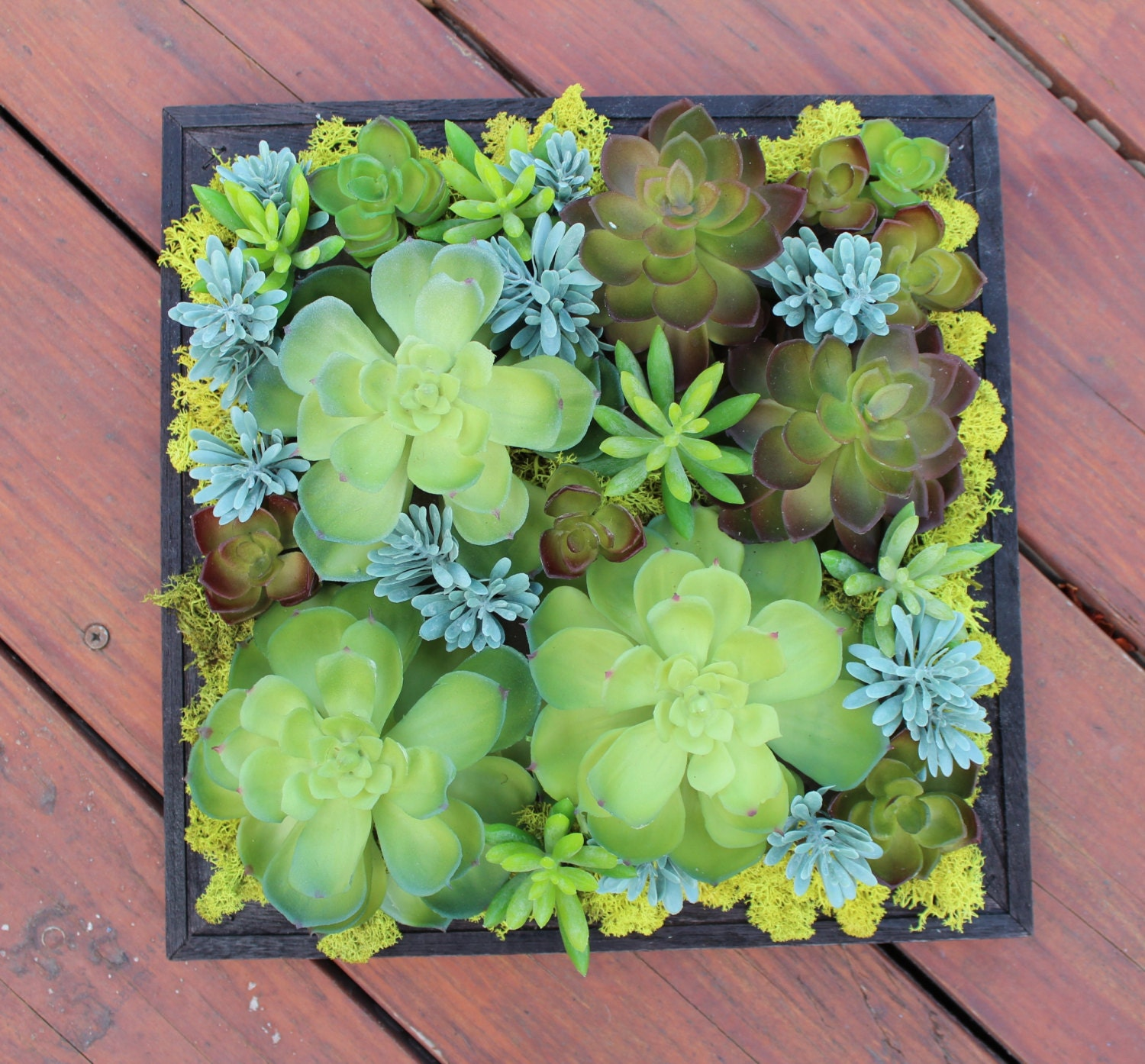 Artificial Succulent Wall Hanging Decoration By KIFDesigns