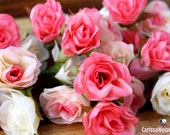 BEST PRICE - 34 Tiny Sweetheart Roses in Shades of Pink and Cream - MINIATURE Roses, Flower Crowns