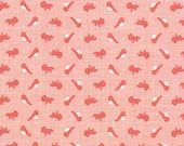 Storybook by Kate and Birdie Paper Co - Birdies Peach (13117-16B) - 1 Yard