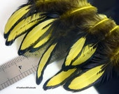 Lemon Yellow Craft Feathers Hen Soft Hackle Fly Tying Feathers Dyed Yellow With Black Laced Edge Small Craft Feathers Wholesale, 12