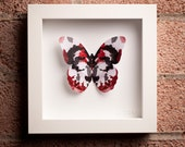 Rorschach: Framed Paper Butterfly with Ink Blot Design