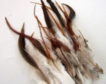 """brown  feathers saddle hackles 24  3 to 7"""" inches SB1   craft feathers"""