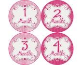 Monthly Baby Stickers, Girls First Year Photo Props, Baby Month Stickers, Baby Announcement, Monthly Photos, Baby Gift, Pink (G089)
