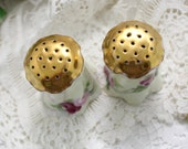 Porcelain Salt and Pepper Shakers - Bavaria Hand Painted and Signed 11478
