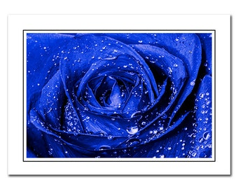 Blue Rose Greeting Note Card with Envelope, Blank photo thank you card, flower photo card, notecards