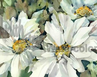 """White Flower Garden Watercolor Painting Giclee Print Wall Art for Living, Dining, Kitchen Room Home Decor by Stein Watercolors """"Daisy Days"""""""