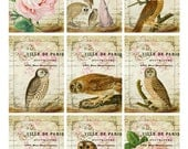Vintage OWLS Owl City Sanctuary Roses Owls - Digital Collage Sheet - Vintage Newsprint - Gift Tags  Jewelry - Altered Art Greeting