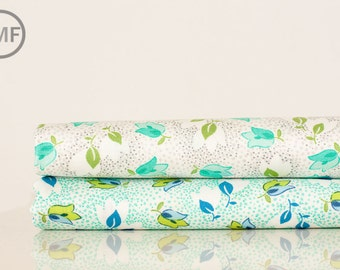 Fat Quarter Bundle Color Me Happy Bouquet, 2 Pieces, Vanessa Christenson, V and Co, Moda Fabrics, 100% Cotton Fabric, 10821