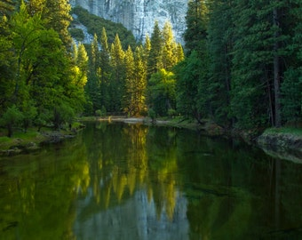 Morning Reflections in the Merced River, Yosemite National Park, Landscape Photograph, Green, Trees, Zen, Nature, Spring, Art Print