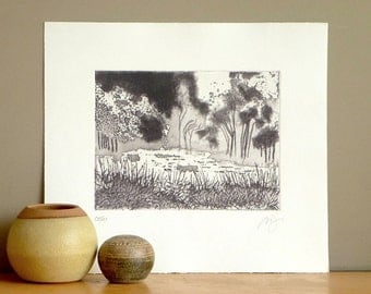 Original Etching Print Aquatint Fine ART MUSEUM GARDEN Lake Mezzotint Printmaking Wall Decor Landscape Print 12x10