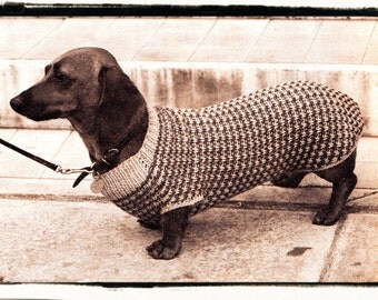 Knitted Dachshund Pattern : Dachshund coat   Etsy UK
