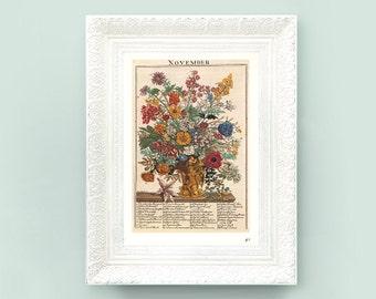 6x9 November Botanical Print. Month Calendar Neutral Pale Green Vintage. Wildflower Encyclopedia Illustration Classification Flower TFA