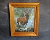 Vintage Framed Paint by Number Buck Deer Forest Nature-Modern Cottage Cabin Nursery Boys Room
