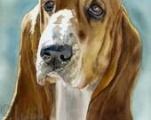 "Basset Bassett Hound, Brown, White, AKC Hound, Pet Portrait Dog Watercolor Painting Art Print, Wall Art, Home Decor ""Low Profile"" k9stein"