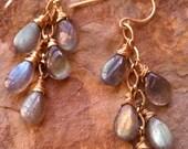 Labradorite Drop Vine Earrings 14K gold Fill and Smooth Labradorite Drops