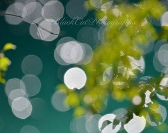 Nature Fine Art Photography, Fairy Lights, Whimsical Wall Decor, Lime Green Sparkle, Modern Abstract Print, Forest Art, Woodland Tree, Bokeh