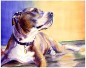 "Pit Bull Watercolor Giclee Fine Art Print 8x10"" [Watercolor Dog Portrait, Pit Bull Print, Dog Art, Watercolor Art, Watercolor Print]"