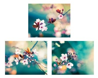 flower photography floral botanical print set of 3 8x10 11x14 nature photography fine art emerald blossom teal art print bedroom decor
