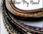 50 Discounted Natural Feather Hair Extension.  Whiting Farm In Grizzly And Solid - Medium Length 7 - 9 Inches (18-23cm)