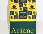 College Pillowcases / College Pillowcase made from Baylor University Fabric