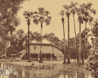 Travel Photography Cambodia, Oriental Landscape, Asia, Vintage Look, House, Jungle, Trees , 8x12, Fine Art Photography - Memories