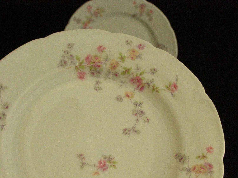 Antique Bassett Limoges Austria China Salad Dessert Plates 2