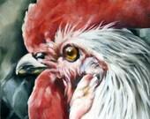 Rooster Print, Rooster Art, Farm Animal Print, Home Decor, Kitchen Art, Print from Original, 6x6 Print