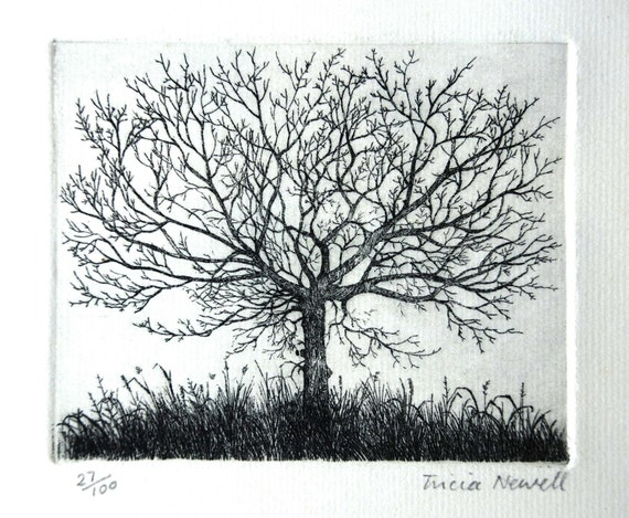Limited edition etching of Tree by Tricia Newell