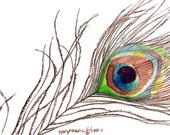 ACEO Limited Edition 6/25- Fly free, Peacock  Art print of an ORIGINAL ACEO watercolor painting, Gift for bird lovers