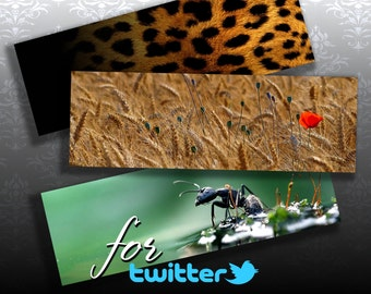 NATURE - 3 Twitter Web Banners Design Digital Collage ChikUna Art - Personal & Business Use Blog Banner