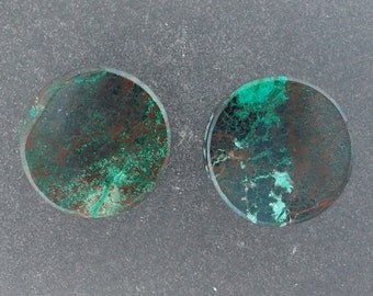 "Malachite Chrysocolla 9/16"",14mm Ear plugs one pair"
