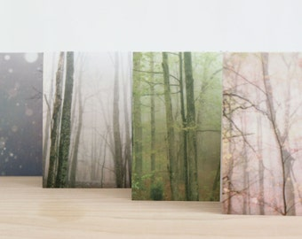 Four seasons forest photography blank photo note cards, modern all occasion nature greeting cards, mixed set of four
