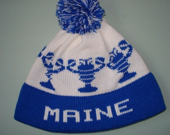 Homemade  Machine Washable Knit Hat for an adult - MAINE