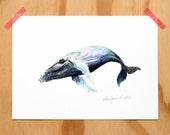 Humpback Whale - an Aquatic Beastie print