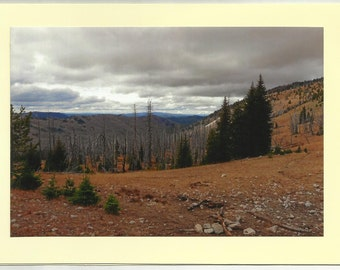 Desolate Wilderness - Original Outdoor Scenery / Local Artist Digital Photo - Blank Photo Card Twin Fold Design - In Stock