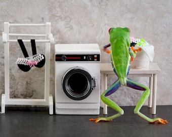 Laundry Day, Laundry room art, Funny Frog Art