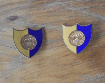 College pins US East Tennessee State College Johnson City Agriculture DI Insignia Set of 2 Vintage pins